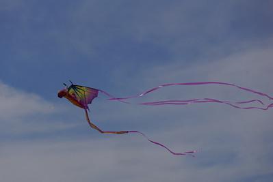 2014 Kite Flying Festival, Basant Mela