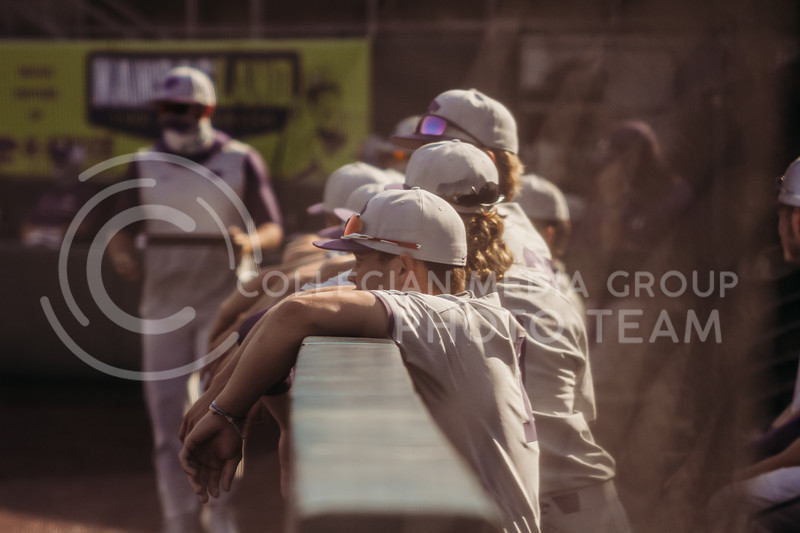 Dugout players watch during the first game of the intrasquad Fall World Series at Tointon Family Stadium on October 8th. (Sophie Osborn | Collegian Media Group)