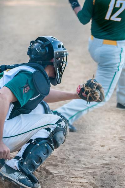 Baseball & Softball 2015