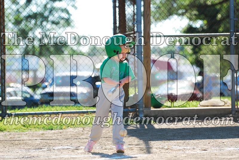 BPD T-ball Avon Green 07-13-08 154 (32)