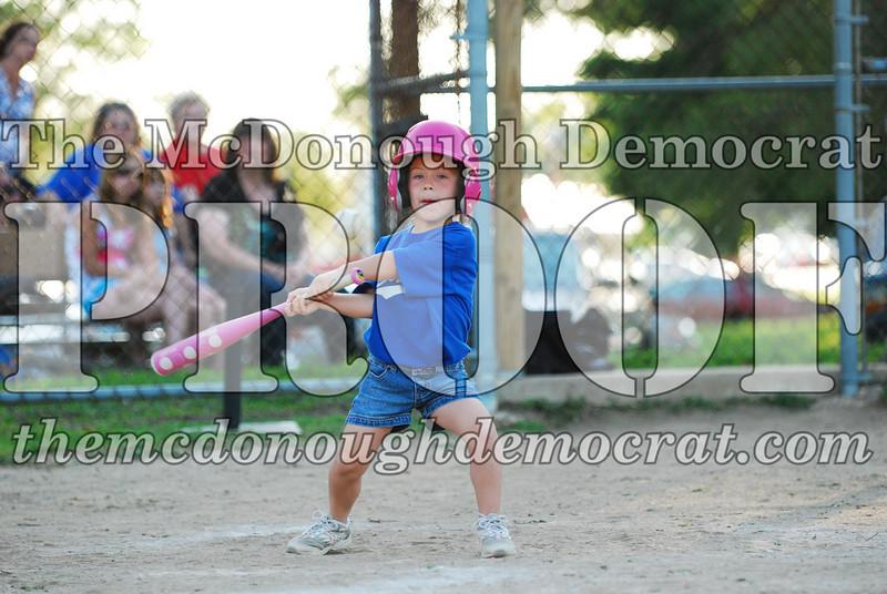 BPD T-ball Cubs 06-22-08 120 (33)