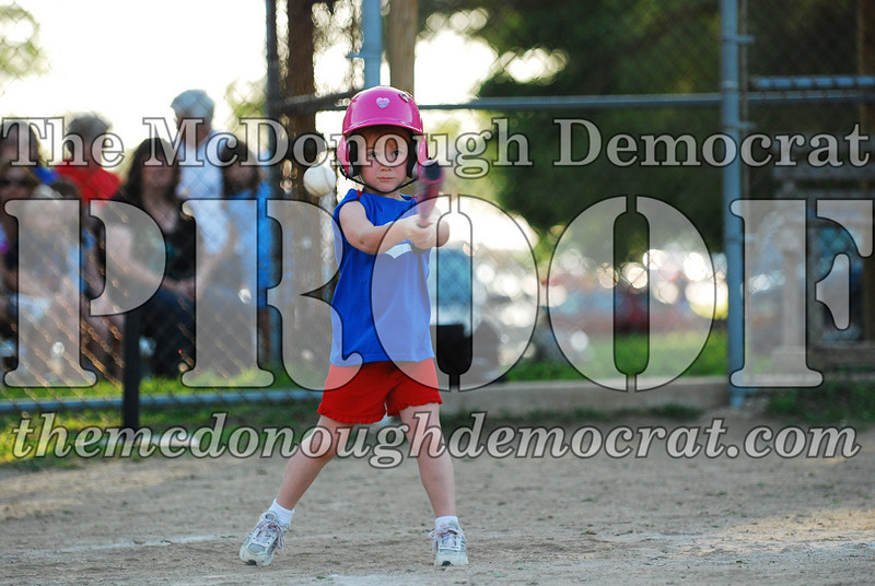 BPD T-ball Cubs 06-22-08 120 (19)