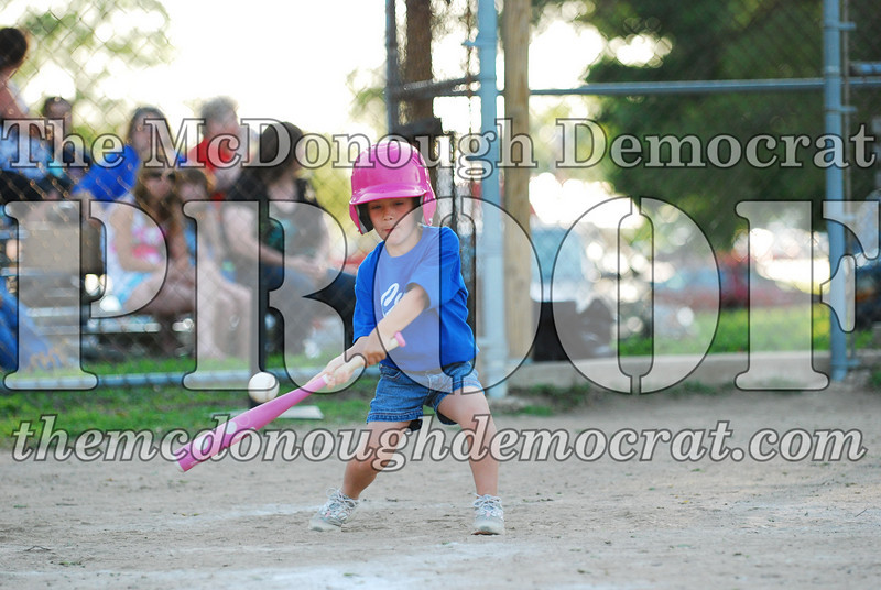 BPD T-ball Cubs 06-22-08 120 (34)