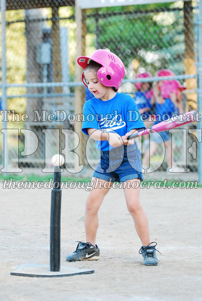 BPD T-ball Cubs 06-22-08 120 (44)