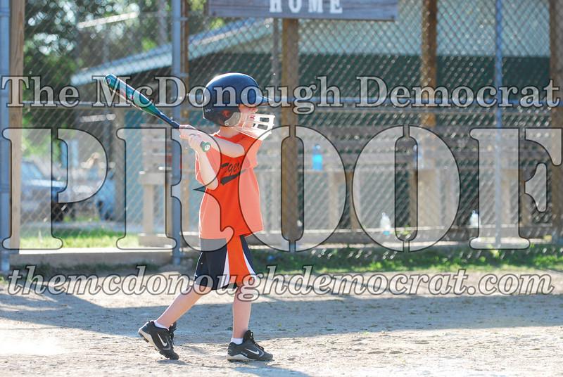 BPD T-ball Tigers 06-22-08 065 (38)