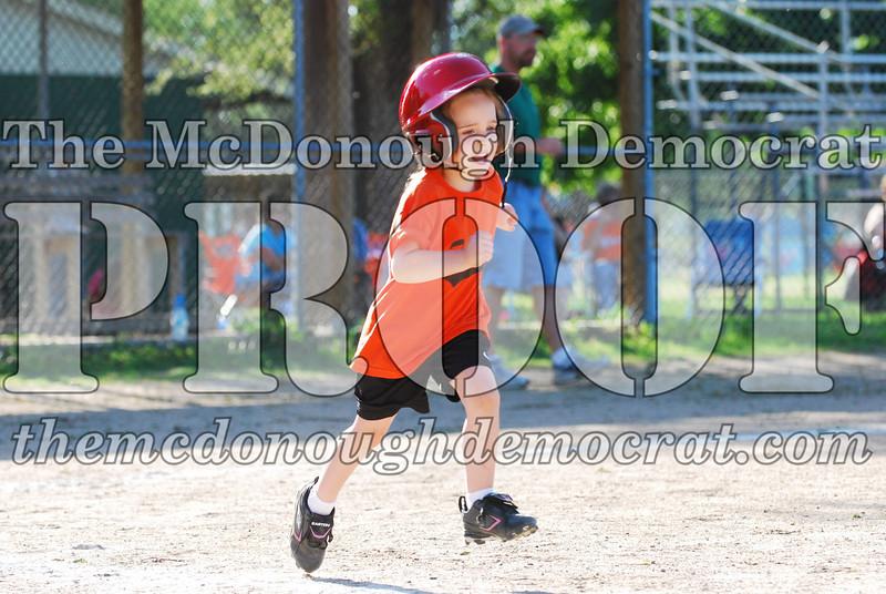 BPD T-ball Tigers 06-22-08 065 (9)
