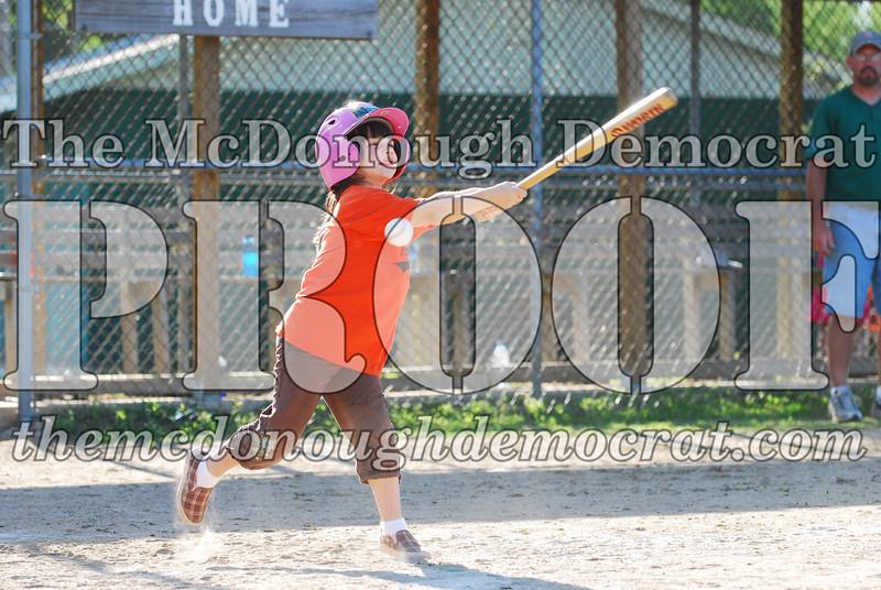 BPD T-ball Tigers 06-22-08 065 (18)