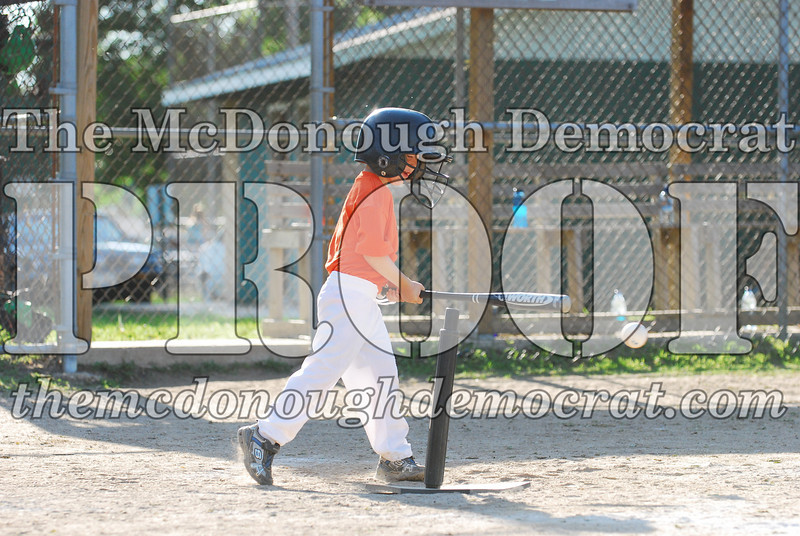 BPD T-ball Tigers 06-22-08 065 (26)