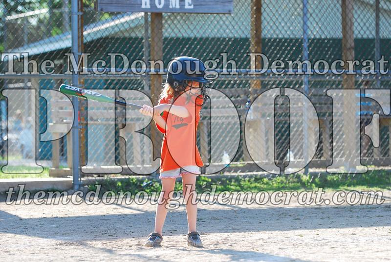 BPD T-ball Tigers 06-22-08 065 (14)