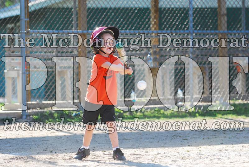 BPD T-ball Tigers 06-22-08 065 (7)