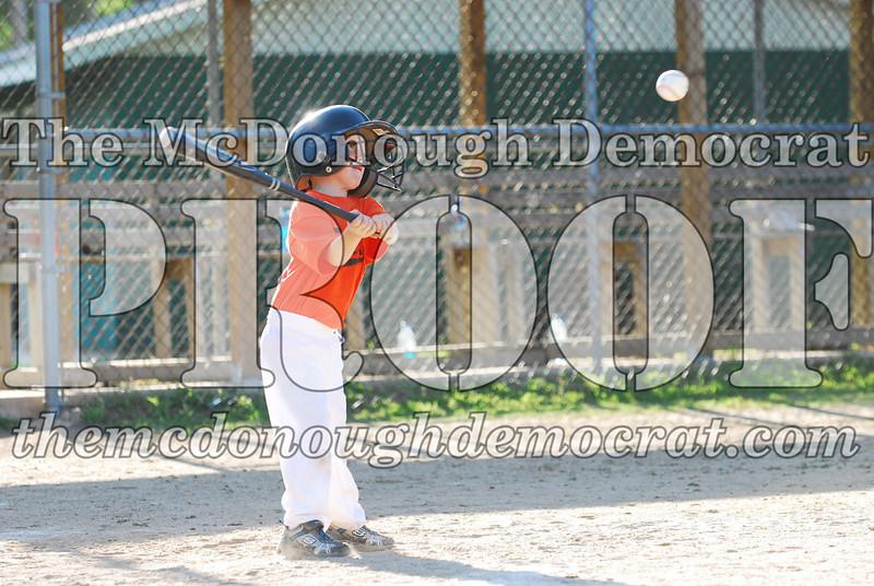 BPD T-ball Tigers 06-22-08 065 (23)