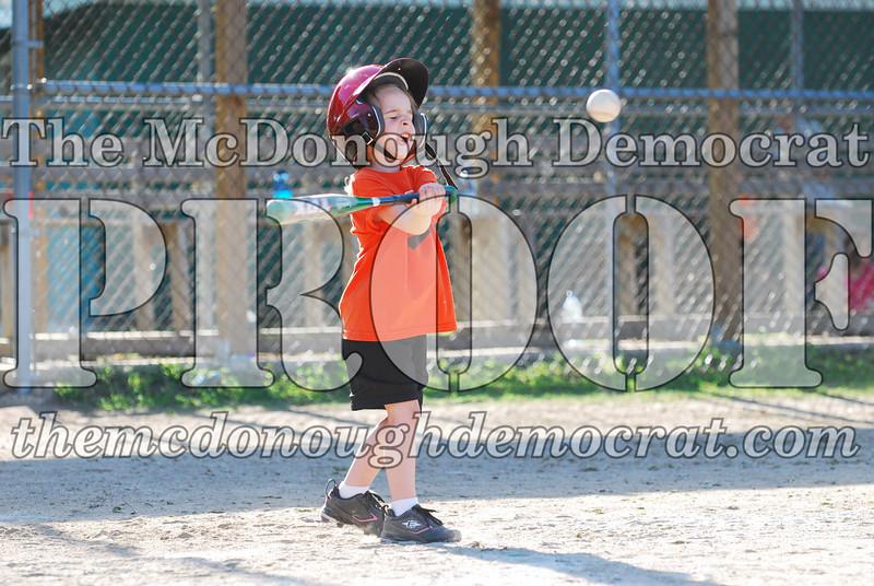BPD T-ball Tigers 06-22-08 065 (8)