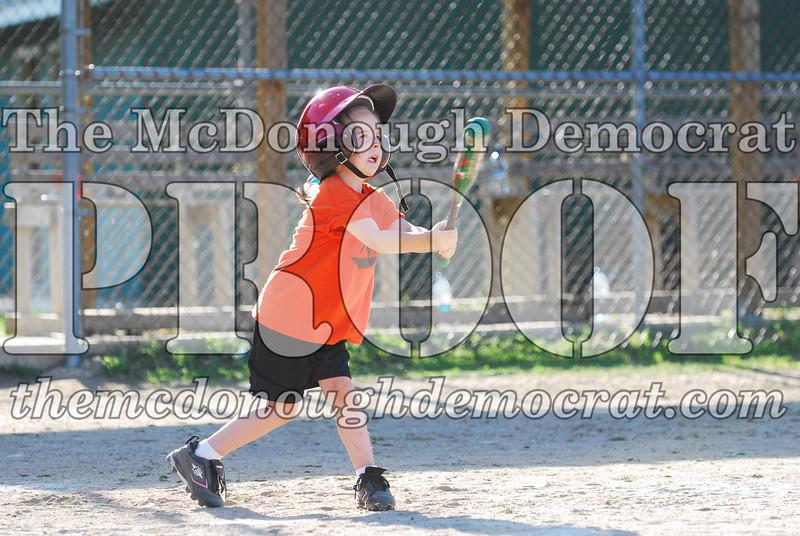 BPD T-ball Tigers 06-22-08 065 (6)