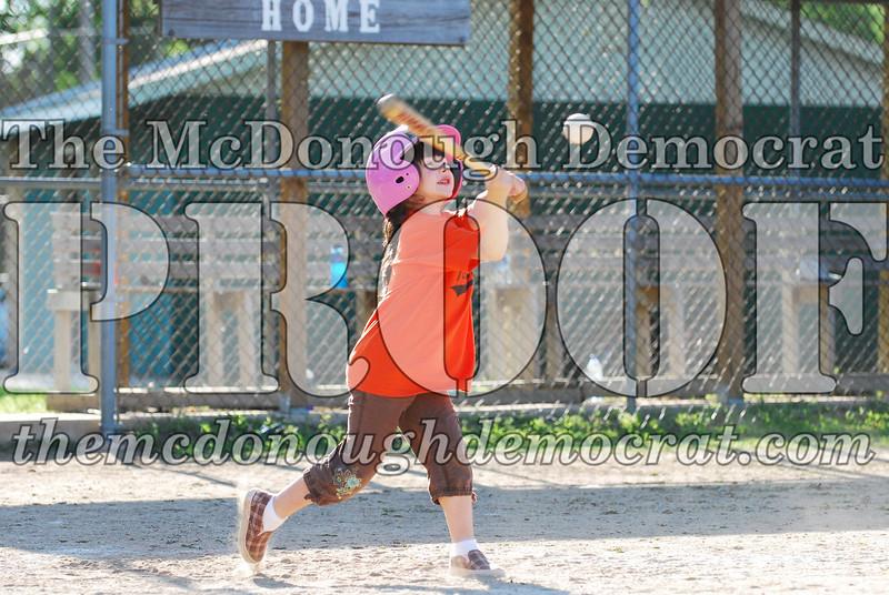 BPD T-ball Tigers 06-22-08 065 (17)