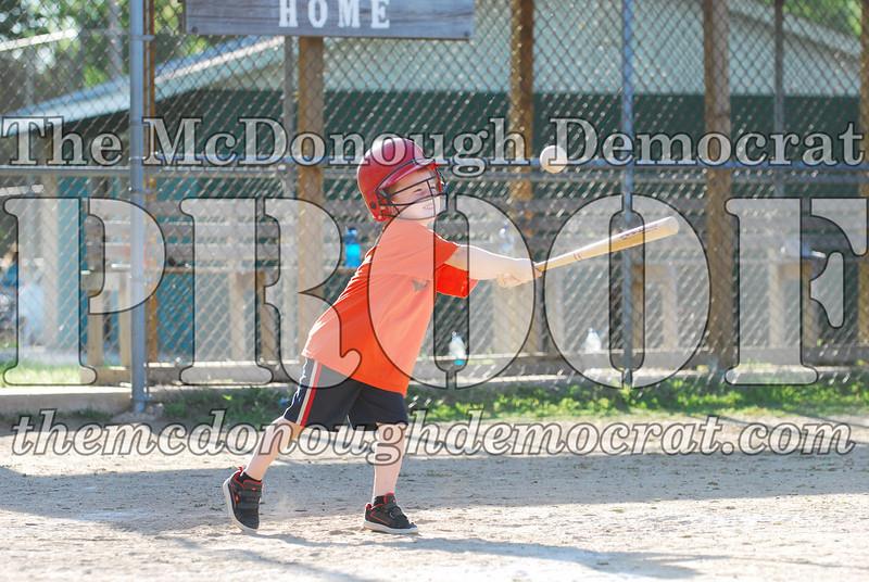 BPD T-ball Tigers 06-22-08 065 (27)
