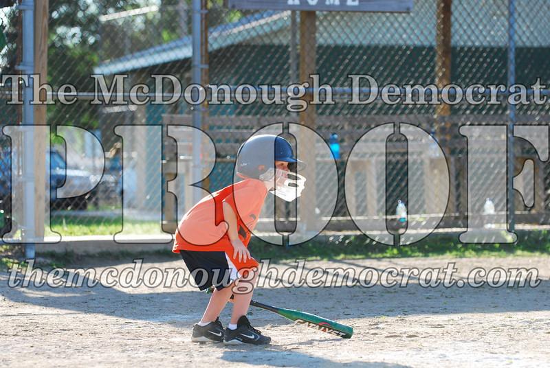 BPD T-ball Tigers 06-22-08 065 (39)