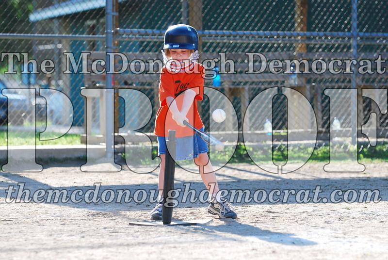 BPD T-ball Tigers 06-22-08 065 (13)