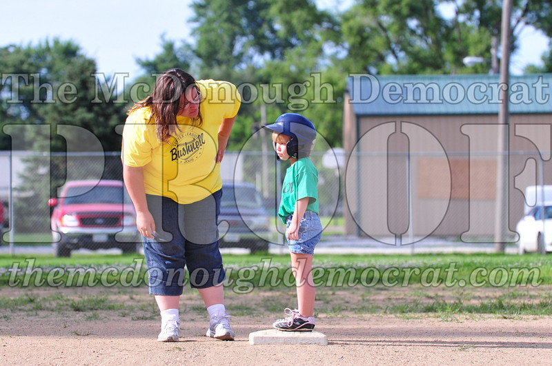 LL T-ball Avon Green vs Yellow 07-12-09 013