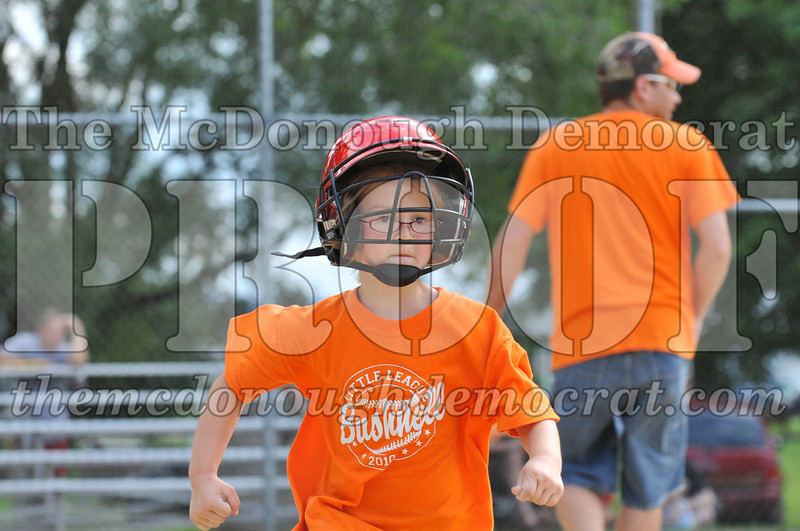 LL T-Ball Orange vs Teal Blue 06-27-10 017