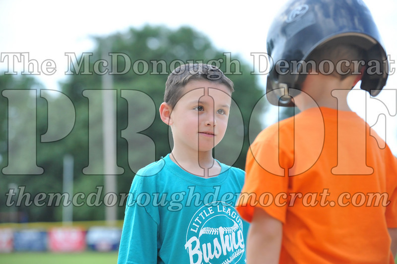 LL T-Ball Orange vs Teal Blue 06-27-10 064