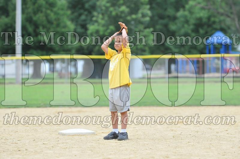 LL T-Ball Yellow vs Blue 06-27-10 005