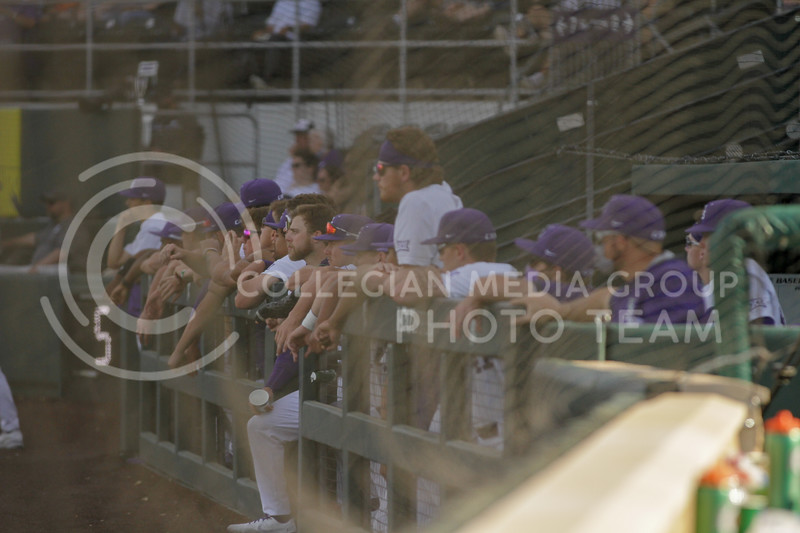 Players in the dugout watch the field during the May 1, 2021 game against Texas Southern at Tointon Family Stadium. (Sophie Osborn | Collegian Media Group)