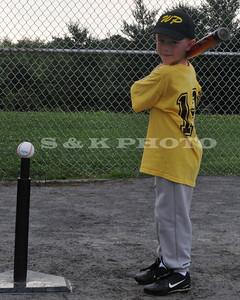 wp baseball_238