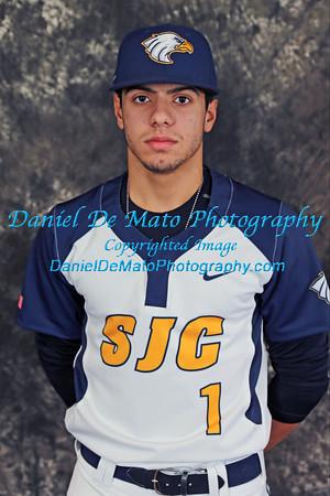 2015 St. Joseph's College Baseball