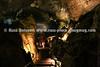 HALL_OF_FAME_BASEBALL_2015_Day 4 Howe Caverns 136