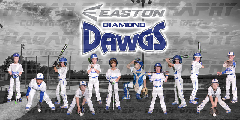 7U- Diamond Dawgs