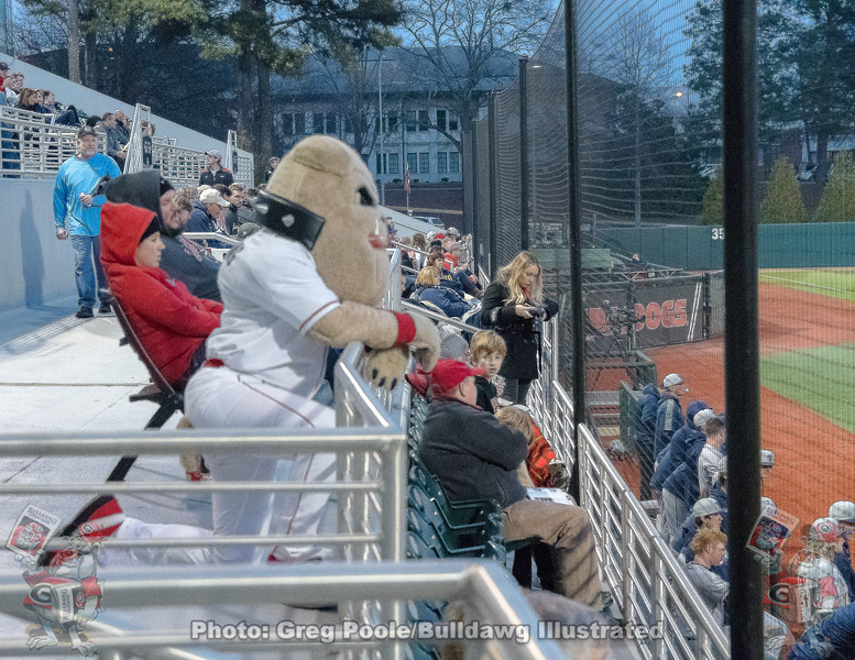 Hairy Dawg watches the game – Georgia vs. Toledo – March 9, 2018