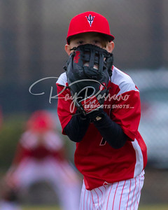 2019 Youth Baseball
