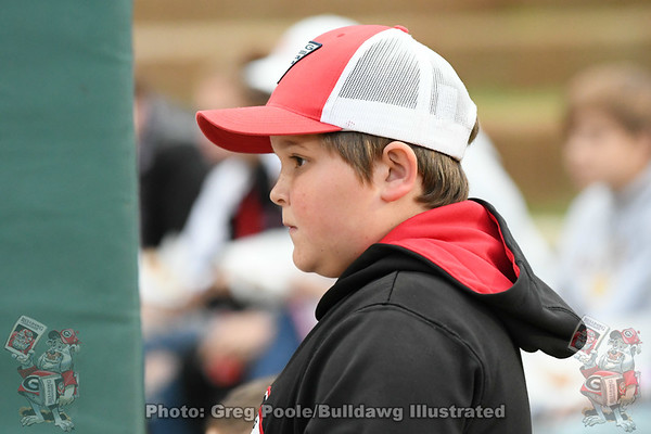 2020 Baseball Season Gallery