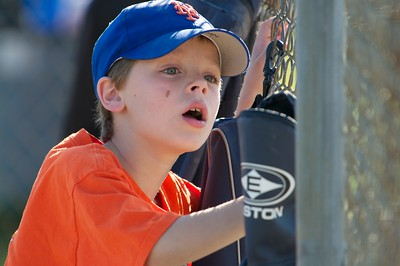 Pinto Mets v Yankees  2010-05-23150