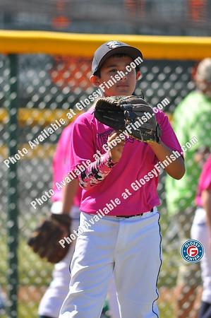 Baseball Youth Fall Championships 2014