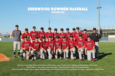 Bowmen Baseball Arizona-9136 Team Names