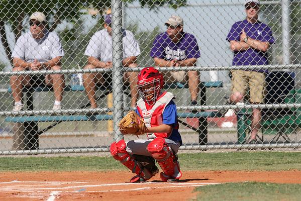 Hounds Baseball
