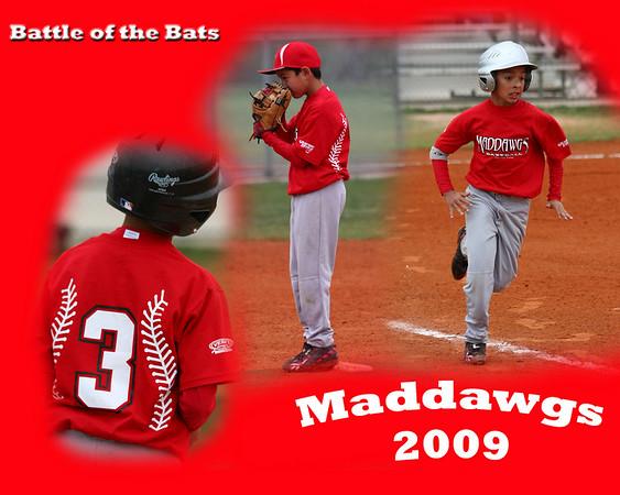 Maddawgs Baseball