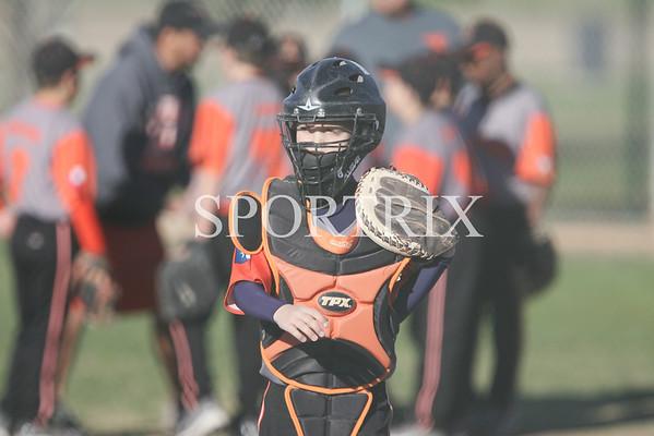 Amarillo Longhorns vs Longhorn Youth Baseball