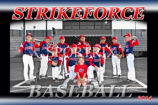 Strikeforce Team 2014