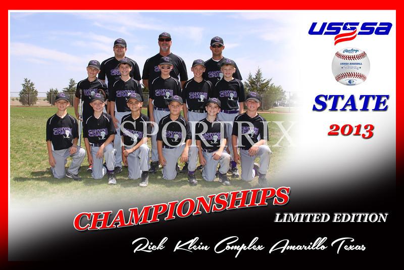 USSSA LIMITED EDITION_Team_ Baseball