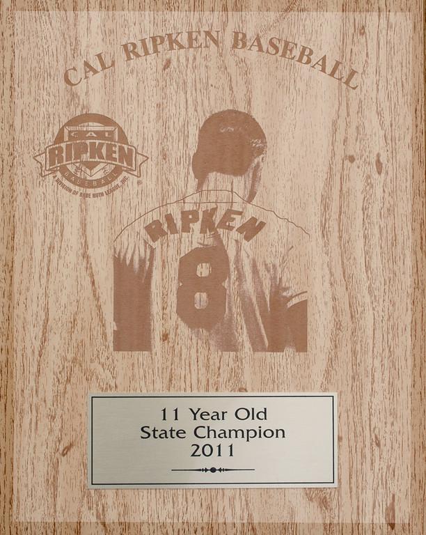 state_award_8878