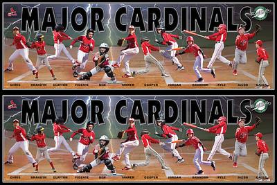 Cardinals 36layout
