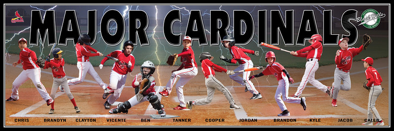 cardinals team_banner_final3_12x36