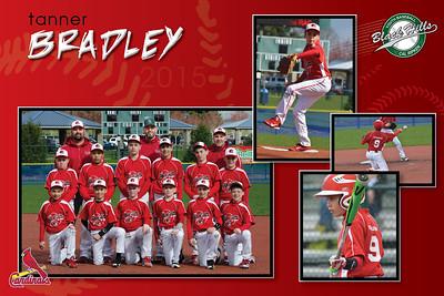18x12Cardinals Layout1 - Bradley2