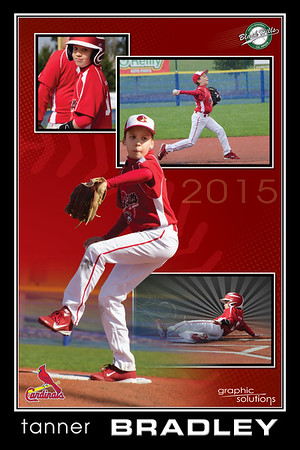 tanner_Layout20x30