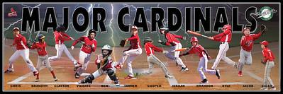 cardinals team_banner_final1