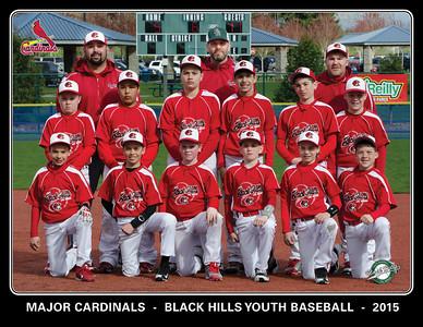 8 5x11 Team Picture
