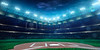 36911044-professional-baseball-grand-arena-in-the-night