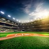 39600285-professional-baseball-grand-arena-in-the-sunlight